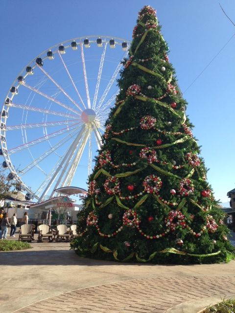 Christmas Decorations In Pigeon Forge Tn : Christmas tree at the island in pigeon forge special