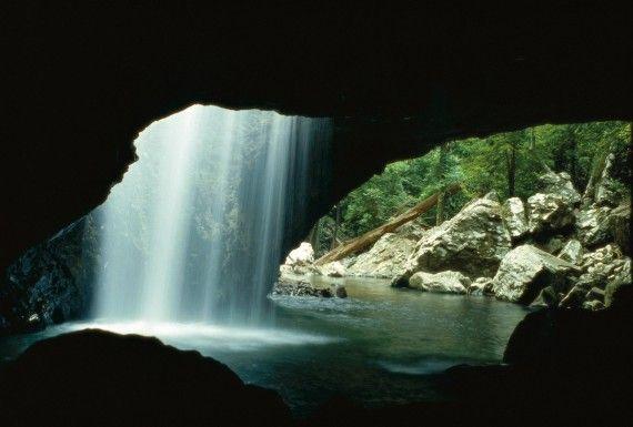 Queensland's 10 best waterfalls : Natural Arch- Springbrook National Park