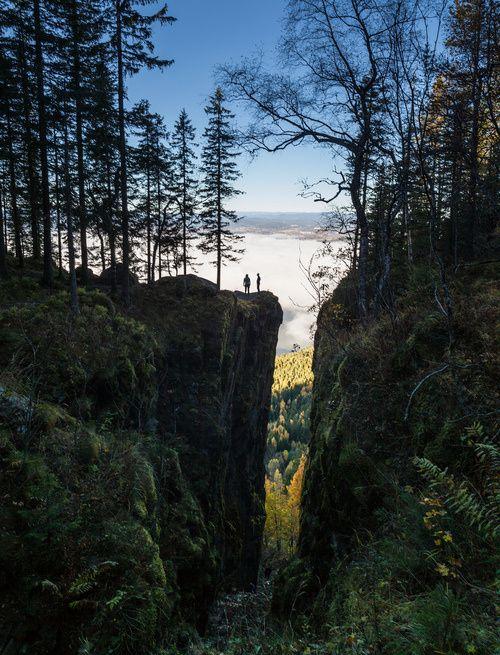 Forest Chasm, Steinsfhorden, Norway