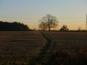 Heart of England Way day 3: finishing the day's walk at dusk