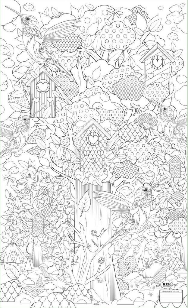 Birdhouse Humming Bird Tree Nature Abstract Doodle Zentangle Coloring Pages Colouring Adult Detailed Advanced Printable