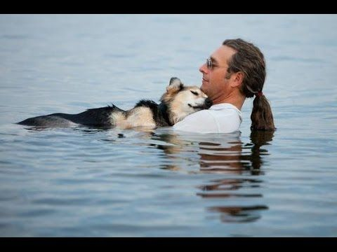 10 Images That Will Restore Faith In Humanity Part 2