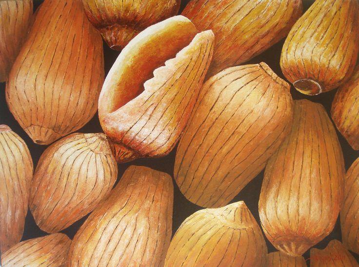 Shell, Acrylic on canvas, 120cm x 100cm, Artist : Aliyas