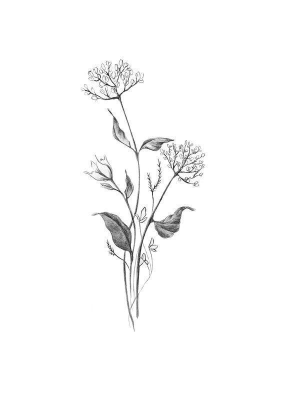 Botanical Spring Flower Bouquet Modern Minimal Drawing Of Simple