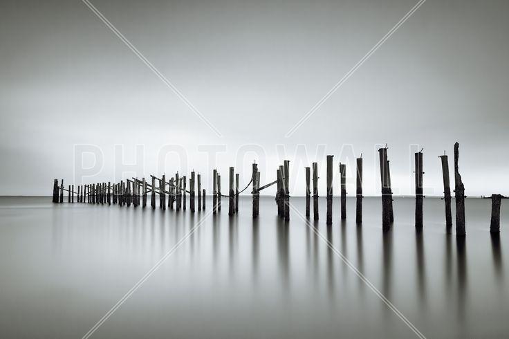 Still - Fototapeter & Tapeter - Photowall