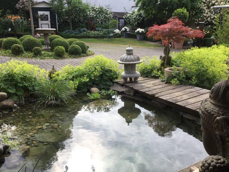 Wohnen und garten de  95 besten Garten Bilder auf Pinterest | Garten ideen, Blumengarten ...