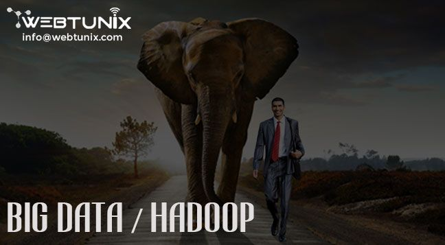 Hadoop is a framework used for storing structured, unstructured and mining data for providing best results. Our big data services help many companies to achieve twin objectives of revenue maximization and increased operational efficiency. If you are searching for Big Data Analytics Company in India, then Research Infinite Solutions is best platform for you.  For more information visit at : http://www.webtunix.com/  Visit at : https://www.facebook.com/webtunix/ Email Id : info@webtunix.com