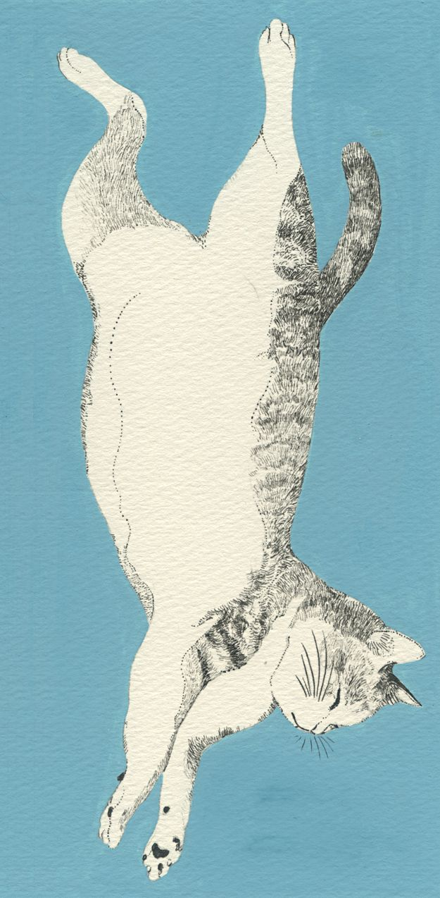 Illustration by Midori Yamada More CoolStuff Gatti e altri nel