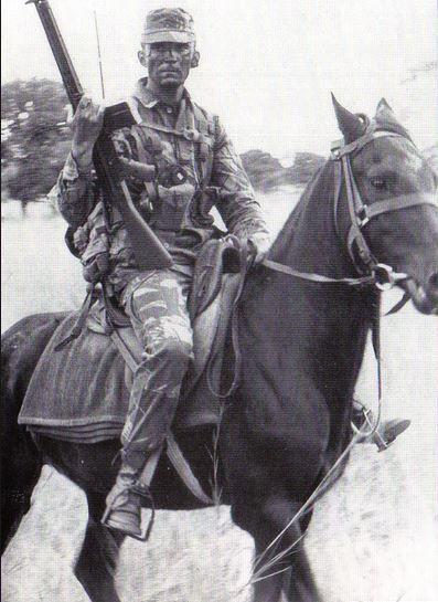 Rhodesian Grey's Scout