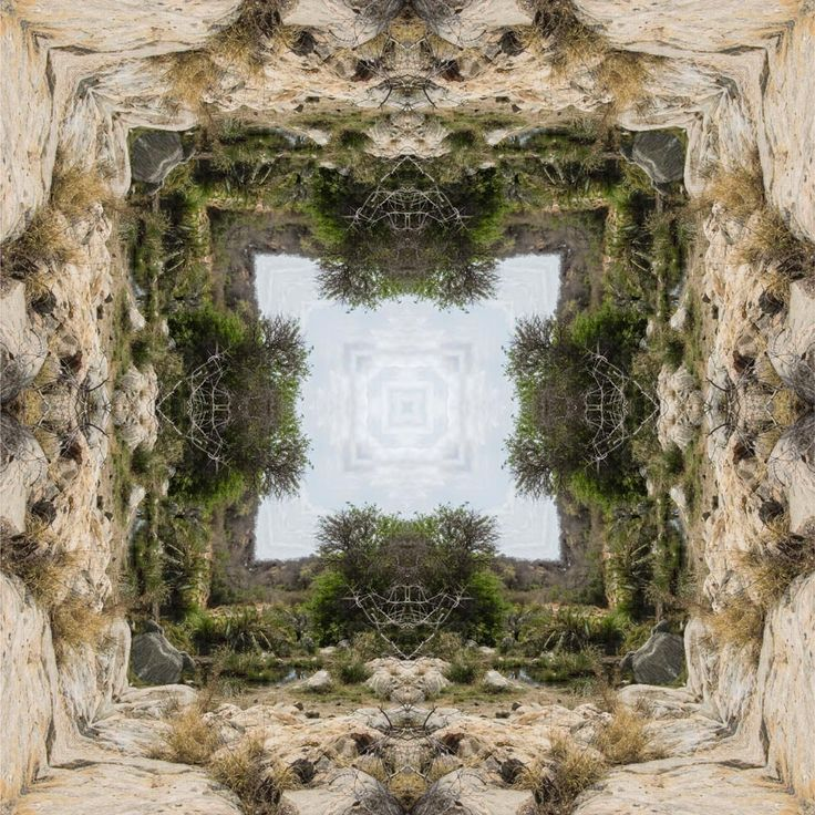 Bushveldt Fountain Mandala Prickly Pear Mandala http://julianventer.com/galleries.html Share if you Please ©JulianVenter