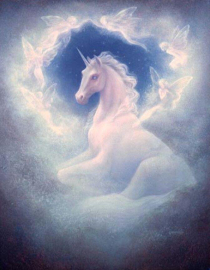 Unicorns And Fairies Real Jack Shalatain ...