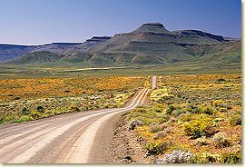 Calvinia and the Hantam Karoo - South Africa