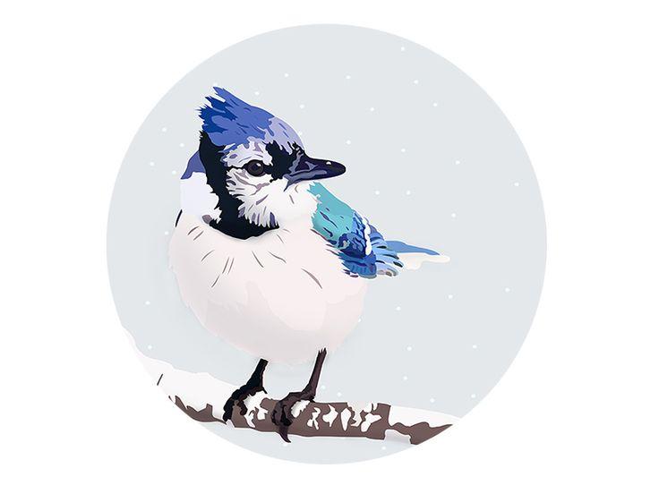 Winter Birds - White by Martinez Patricia