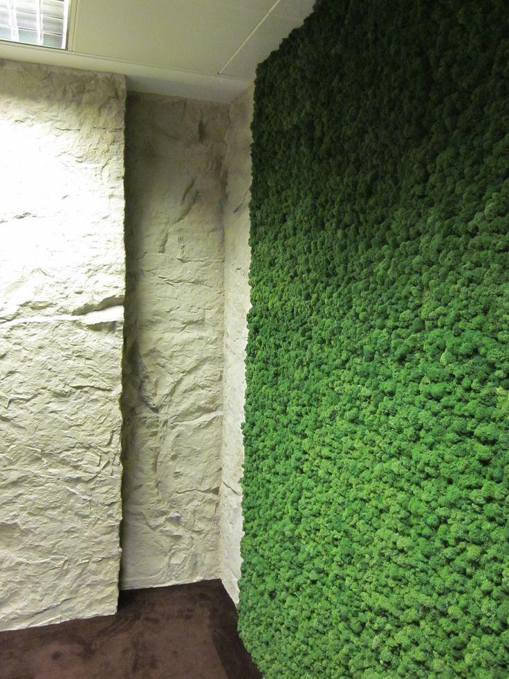 Indoor Moss wall.