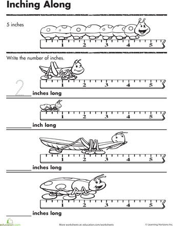 math worksheet : measurement with inches worksheet  measurement with inches  : Measurement Kindergarten Worksheets