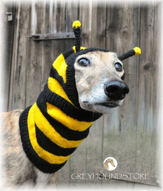 MAYA THE BEE Woolen cap for by Greyhoundstore on Etsy, $28.00