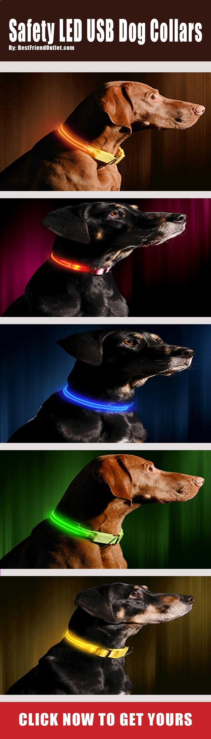 $30.99 - Get Our LED Safety Dog Collars That Are Perfect For Always Making Sure Pets Are Seen. Quit Trying to Make The Perfect Homemade DIY Personalized Dog Collar & Check Out This Safety Collar.