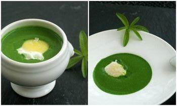 crème aux herbes - œuf de caille poché