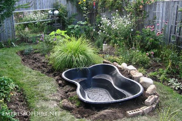 Advice for starting a new garden pond using a prefabricated pond form or installing a pond liner and recirculating pump.