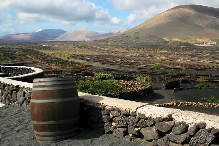 Volcanic landscapes sheltering vineyards #Lanzarote #vineyards