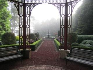 A misty Solar Springs Winter morning