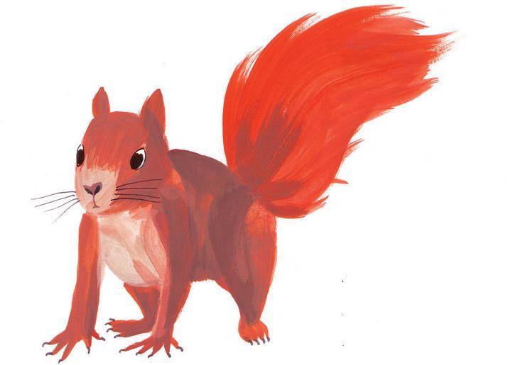"""Résultat de recherche d'images pour """"jeux animaux"""""""