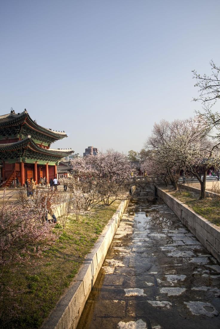 창경궁, Seoul, Korea