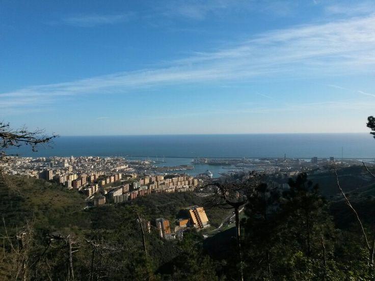 Genova dal Parco del Peralto