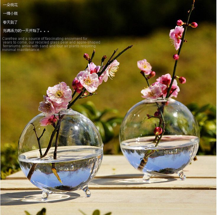 Details about Clear Stand Glass Flower Vase Fish Pot Table Landscape Bottle Round Container US