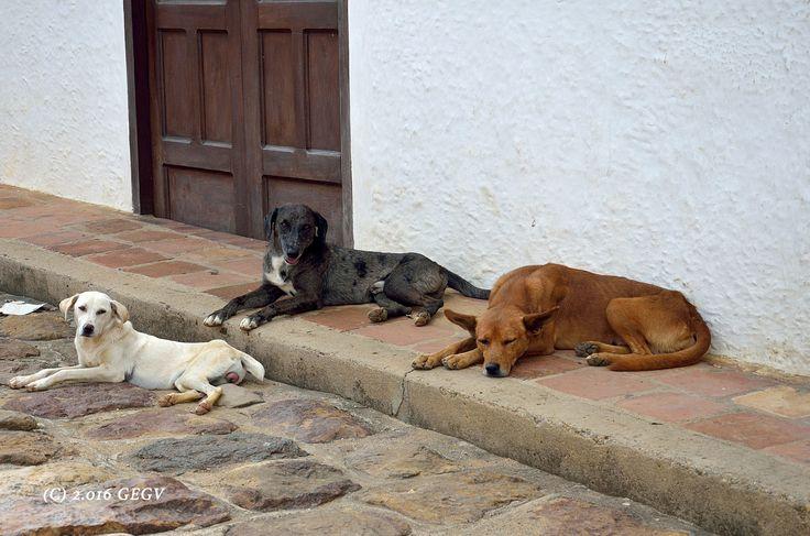 Guane, Santander, COLOMBIA.
