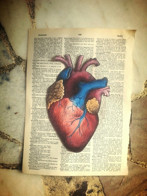 Anatomical Heart on Dictionary Page
