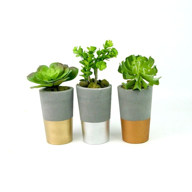 So cute!  Set of 3 tall concrete succulent planters.  Charcol concrete base, dipped in metallic gold, silver and copper.  Available now at www.ifoundlove.com.au  (http://www.ifoundlove.com.au/tall-concrete-pots-set-grey-metallic/)