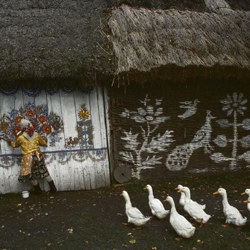 "Poland. Zalipie, the ""painted village"" near Ternow. Houses are completely painted on the inside and outside by their owners. 1976. Bruno Barbey"