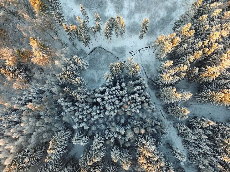 The Best Photo Contest Ideas On Pinterest National - The incredible winners of the 14th smithsonian photo competition