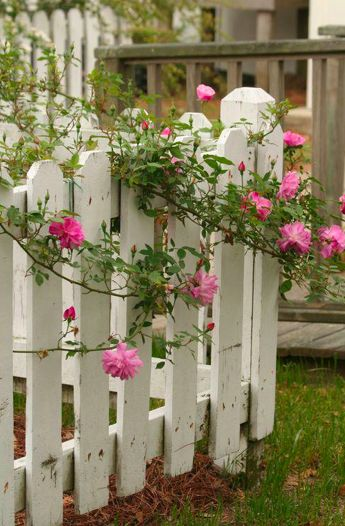 16 Curated Fence And Gate Ideas Ideas By Hatchreppard