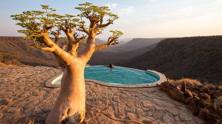 Kunene, Namibia: Kunen, Awesome Trees, Grootberg Lodges, Travel Channel, Daily Escape, Place, Infinity Pools, Namibia, Pools Pools