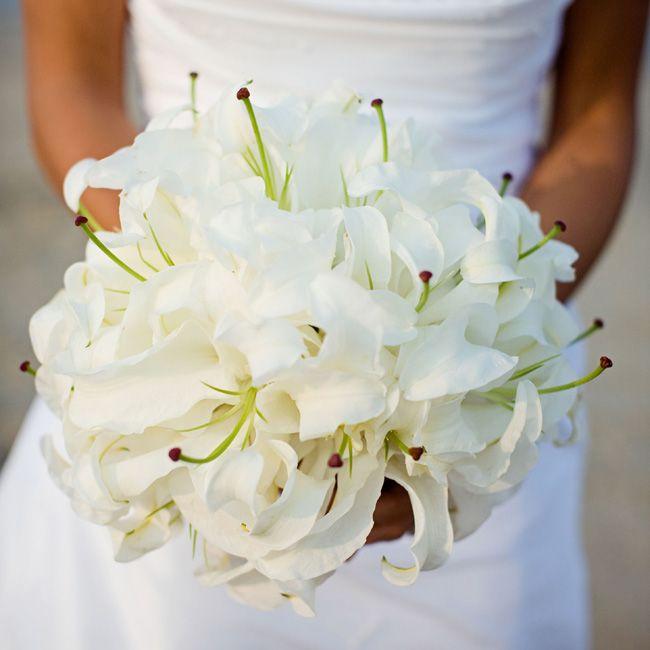 69 best Oriental Lily Wedding - White Casablanca images on Pinterest ...