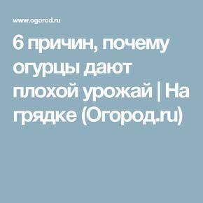 6 причин, почему огурцы дают плохой урожай | На грядке (Огород.ru)