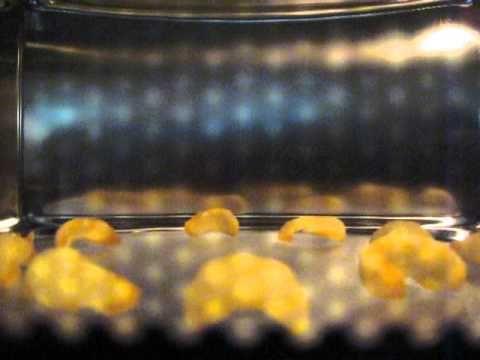 Le patatine soffiate al microonde sono un incrocio tra le celebri Cipster Saiwa e le nuvole di drago che si trovano generalmente nei ristoranti cinesi. Leggere e croccanti, queste chips sono natura…