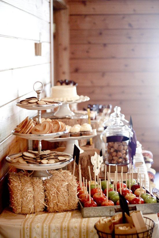 apples and carmel , corn on cob, bbq, coleslaw, Front Range to cater??? bananna pudding or peach cobbler for dessert? Barn buffet - mini hay bales