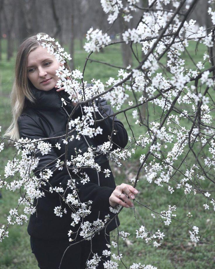 Каждую весну я стараюсь не пропустить два главных события: белые сады алычи в марте и красные поля маков в мае. Первый пункт -  Алычовый фотоспам неизбежен сори :)
