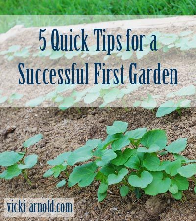 Quick Tips for a Successful First Garden {Healthy Habits Tuesday}