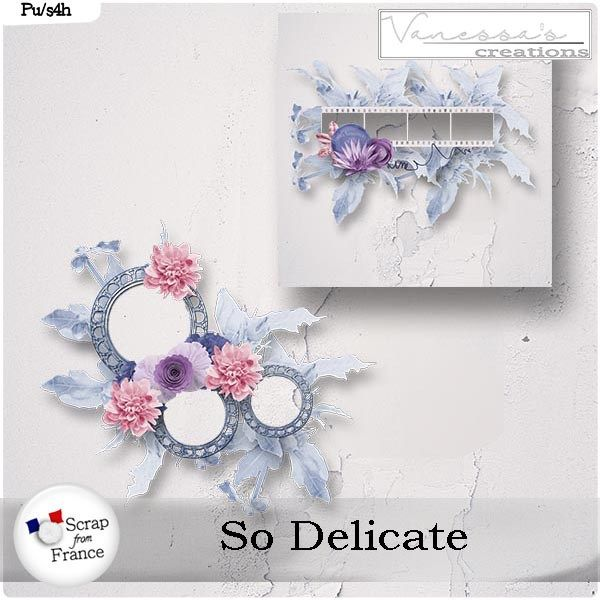 So Delicate by Vanessa's Creations http://www.digiscrapbooking.ch/shop/index.php?main_page=product_info&cPath=22_228&products_id=18891&zenid=18248079fceca8419df5ecfe1f043978 http://scrapfromfrance.fr/shop/index.php?main_page=product_info&cPath=88_308&products_id=11669