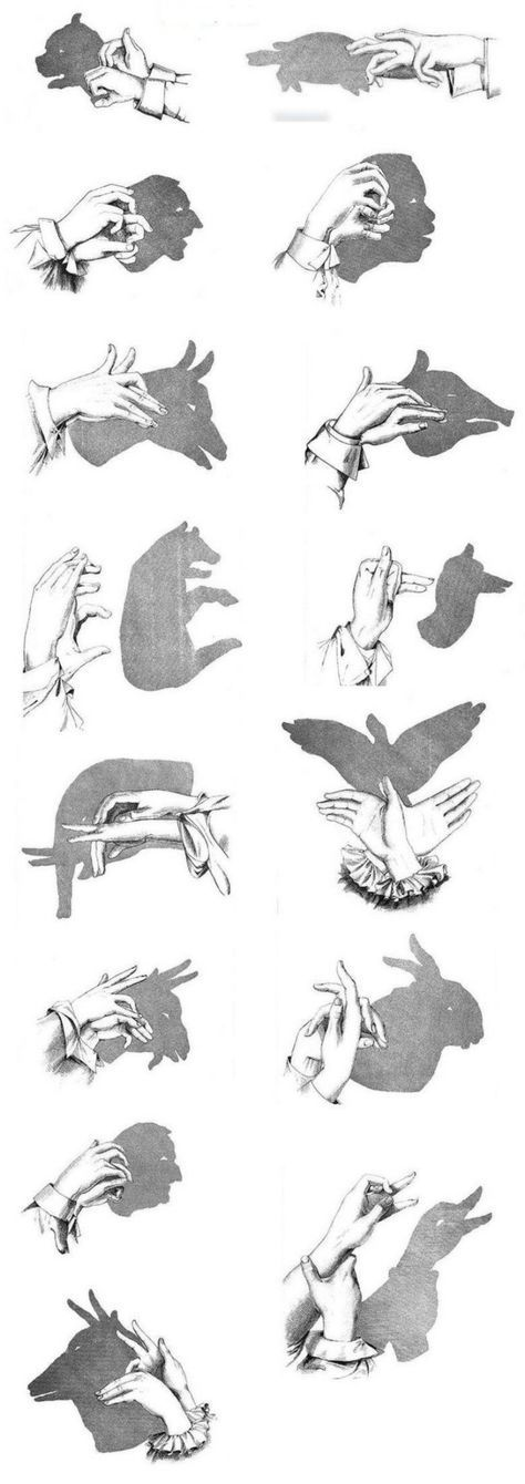 Make shadow theater yourself and let your hands play  – blubb