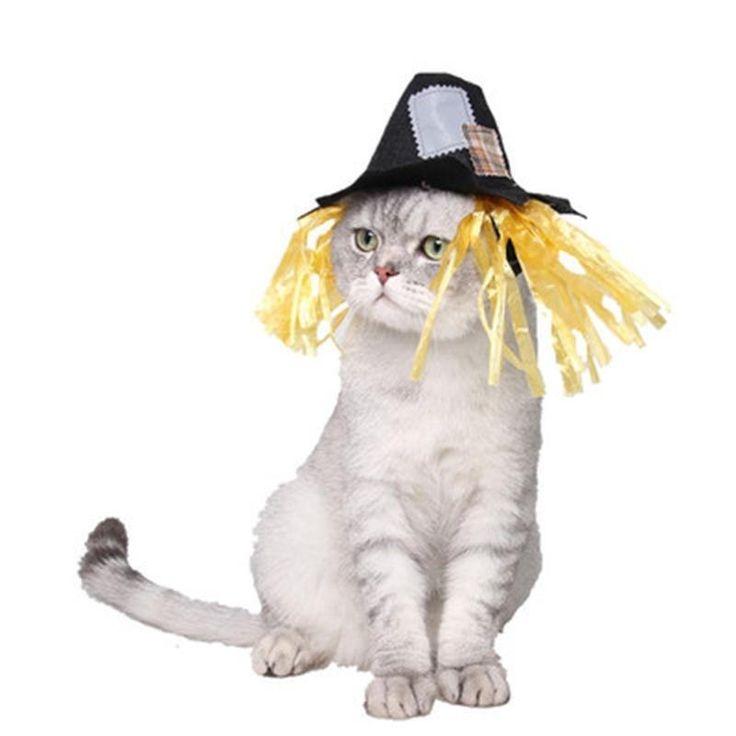 Best 25+ Halloween costumes scarecrow ideas on Pinterest ...