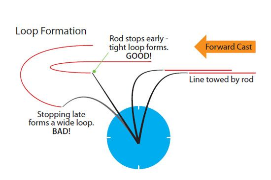 fly casting diagram showing loop formation by andy steer angling knots rh pinterest com
