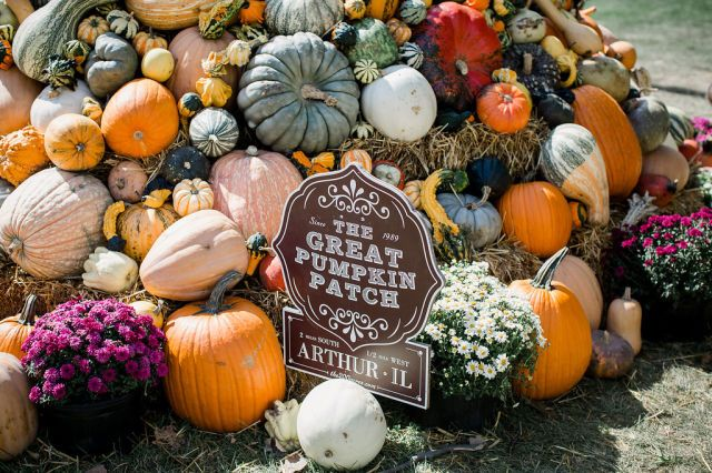 The Great Pumpkin Patch is the biggest seasonal display of pumpkins and gourds at a Country Living fair.