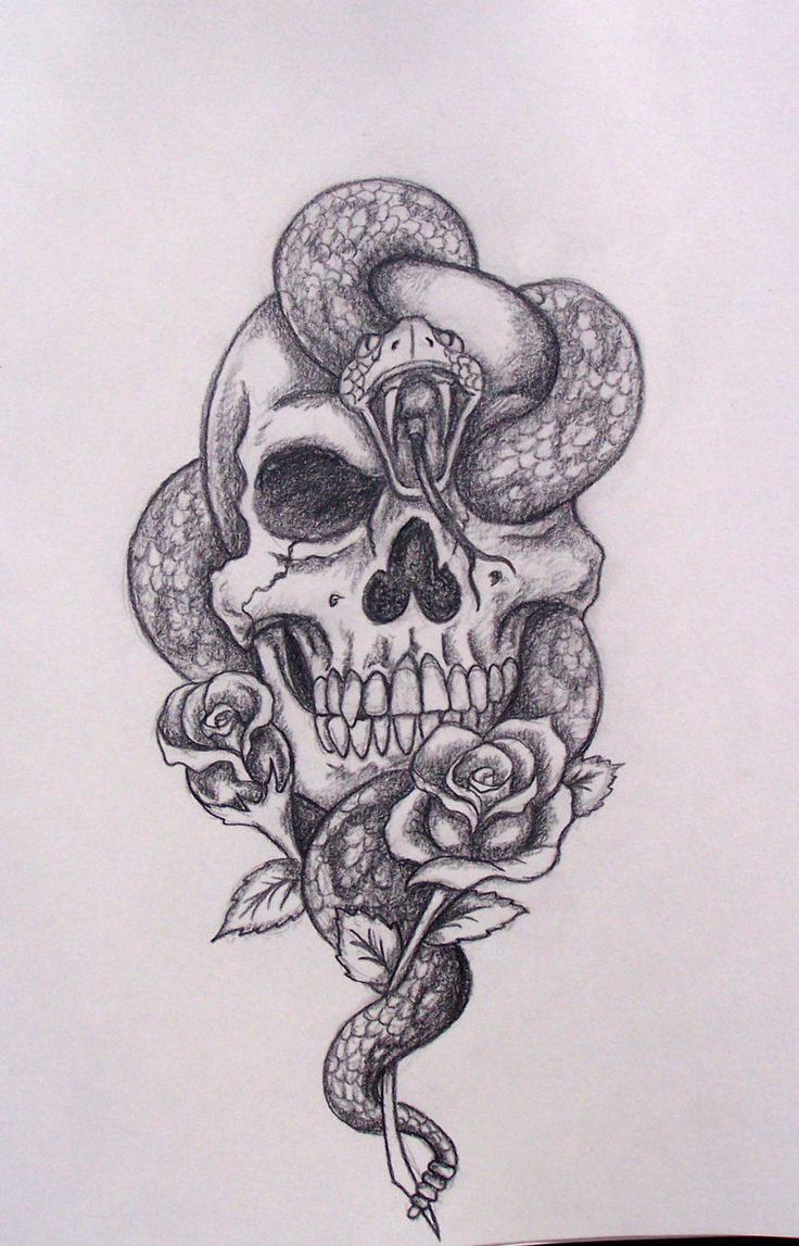 Snake skull drawing. Cool tattoo idea