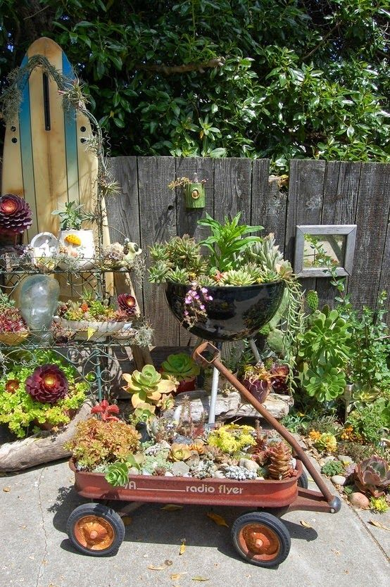 Succulents In Containers - I Love The Old Barbeque Turned -7548