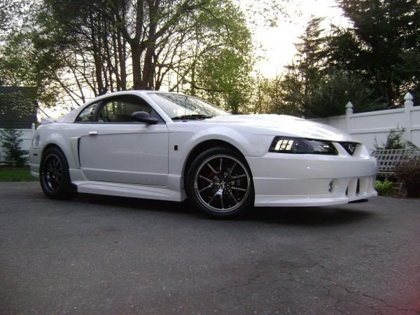 Pic Request: White 99-04 Mustang w/ Black Chrome wheels ...